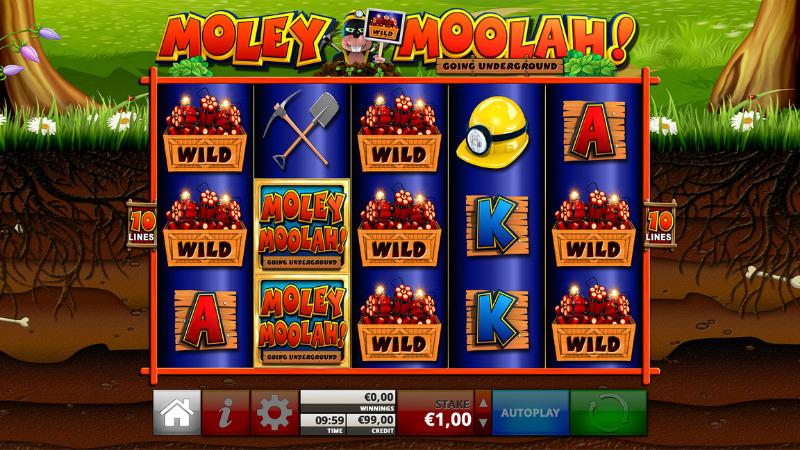 Moley Moolah Slots Wilds