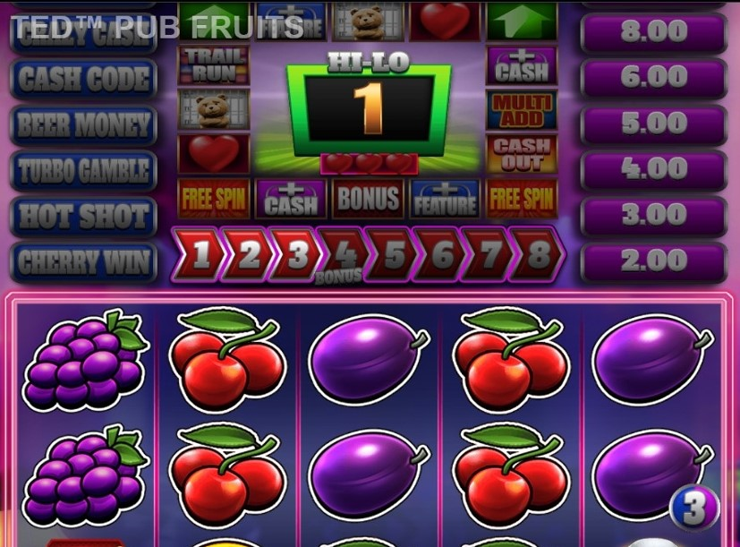 Ted Pub Fruits Series Slot Gameplay