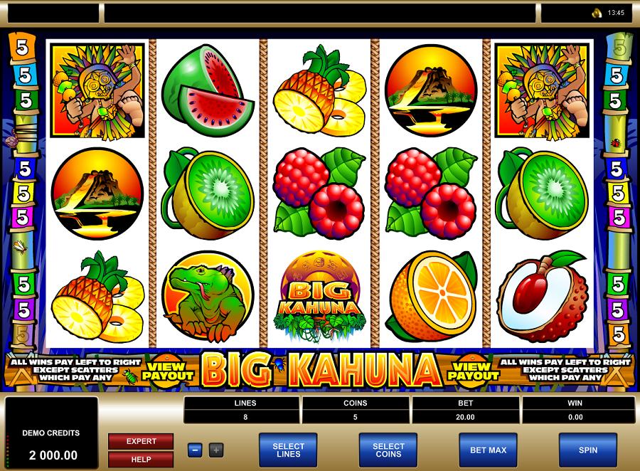 Big Kahuna Free Slots