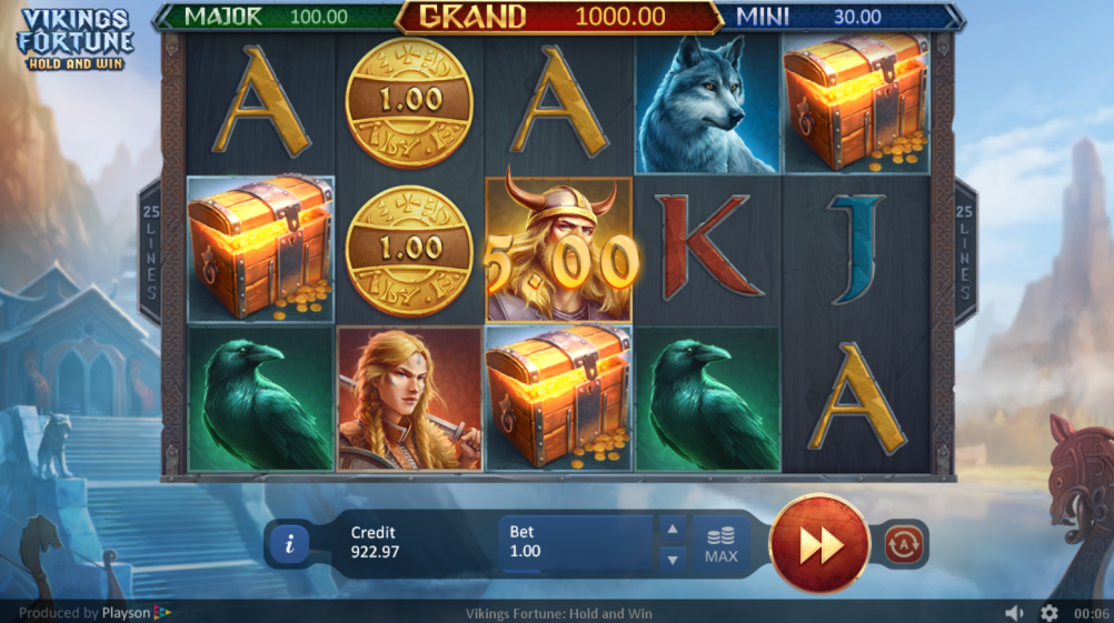 Vikings Fortune: Hold and Win Slots Game