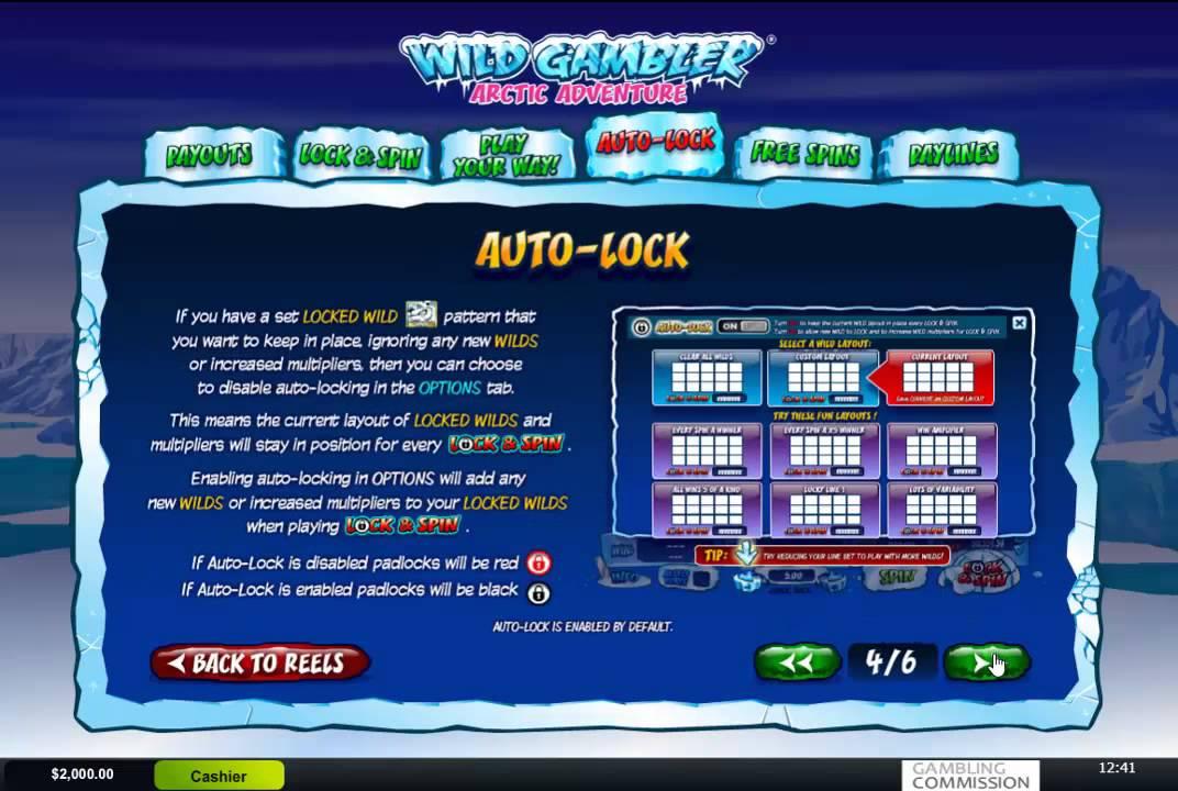Wild Gambler Arctic Adventure Slot Paytable