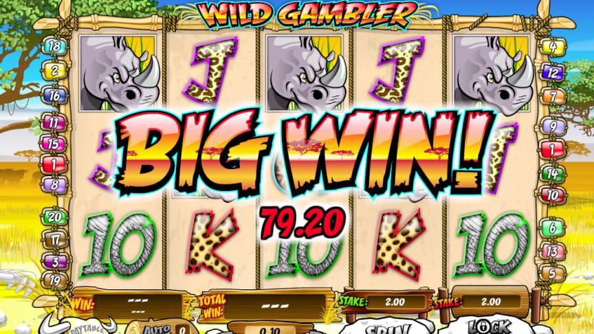 Wild Gambler Slots Win